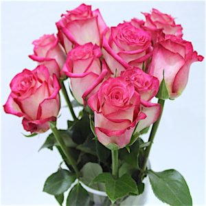 Flower Bouquet with pink and cream rose - SKUFLR03 - Flowers, Cakes and Gifts delivery in Dubai UAE