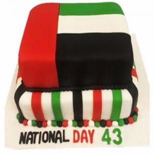 UAE Nationa Day Cake4